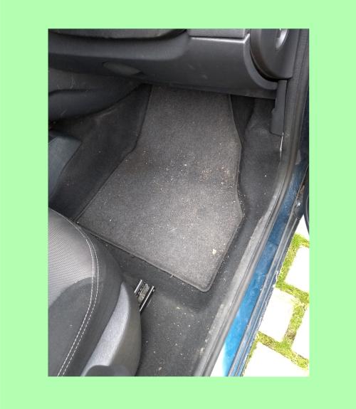 leichte Verschmutzungen, wie Fußmatten